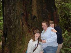 Redwoods 2009 185