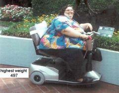 497 highest weight