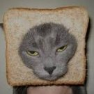 Carb Kitty