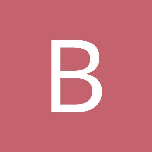 bitsybug