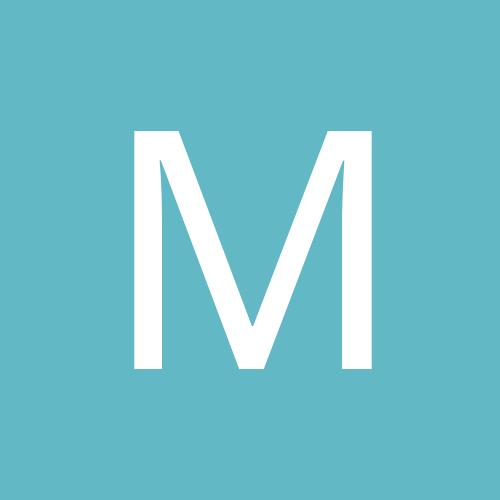 metaslimindia