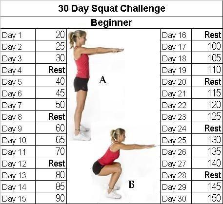5aabfd5792699e0272d87ed32cddeeb4--beginner-fitness-challenge-challenge--days.jpg