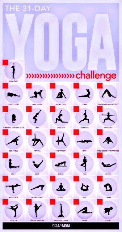 31-Day Yoga Challenge~4.jpeg