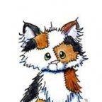 MeowAMR