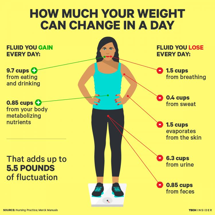 weight fluc.png
