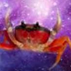 Space.Crab