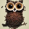 CoffeeGrinDR